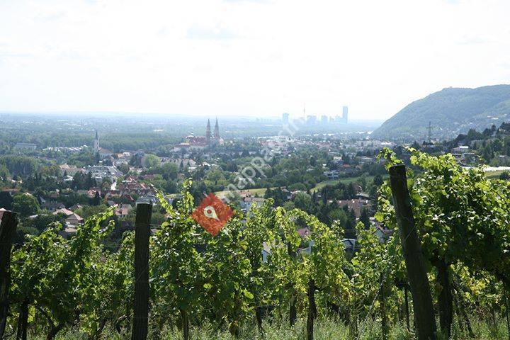 Weingut Ubl-Doschek